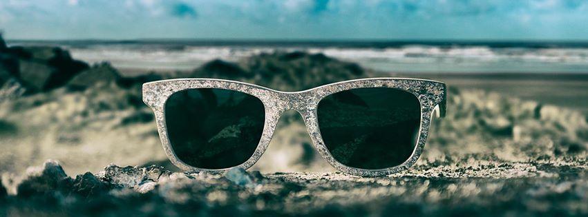 beaver  bril
