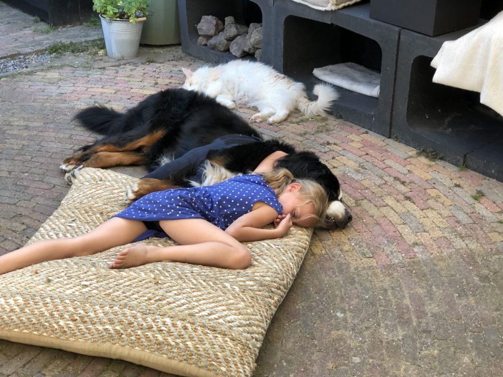 kinderen en een hond