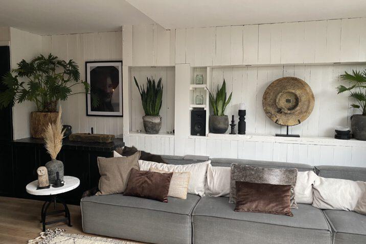 voordelen planten in huis